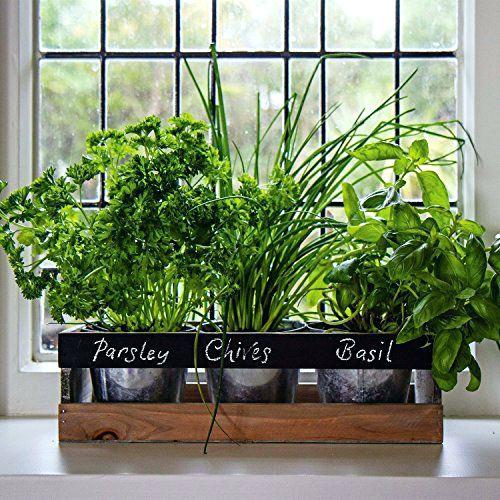 Kitchen Window Sill Herb Gardens
